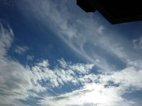 2011-8-30-neko4.jpg