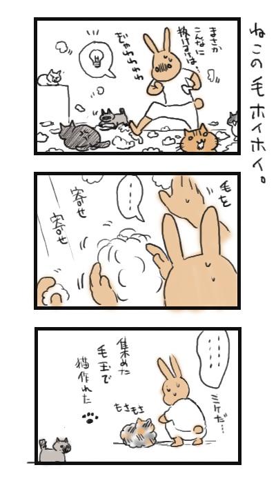 8nekoburasi38.jpg