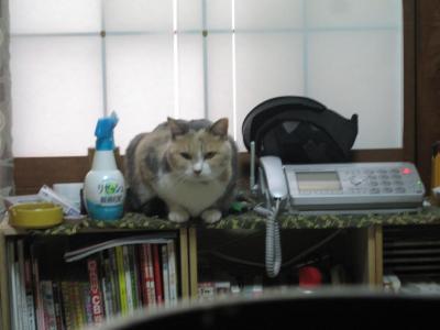 2010.09.11北海道旅行 295