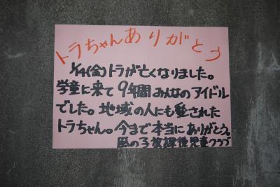 2011年1月20日 002