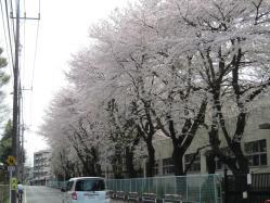 2011年4月14日 006