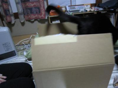 2011年4月20日 009
