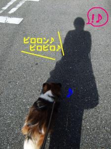 20091021-1.jpg