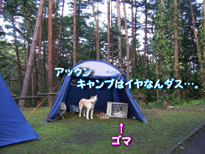 aki_20110928172307.png