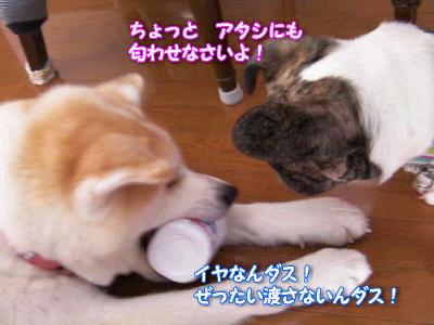 nihiki_20110210193524.png
