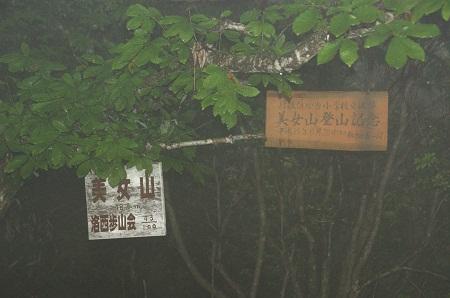 20110619美女山1