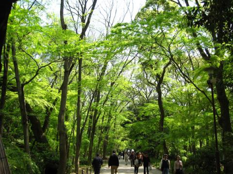 下鴨神社20100501-5