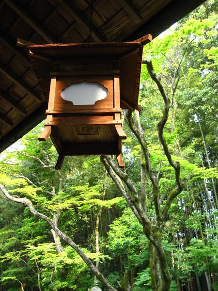 大徳寺高桐院20100525-4