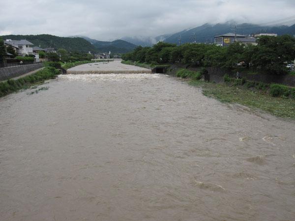 高野川20100714-3