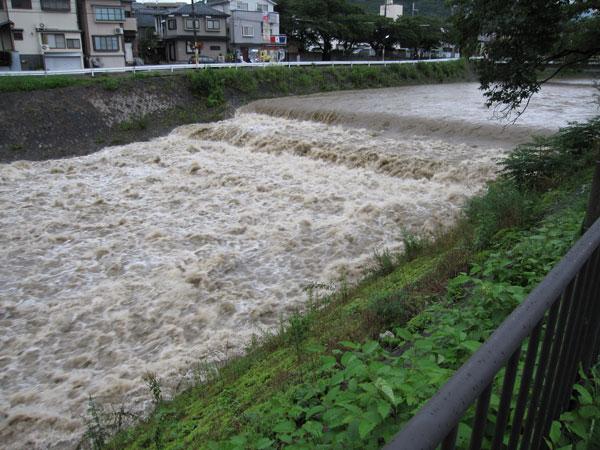 高野川20100714-4