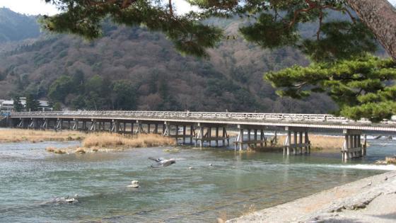 渡月橋20080308