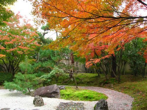 京博「堪庵」①20081121