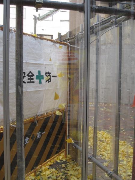 工事フェンスの中20091128