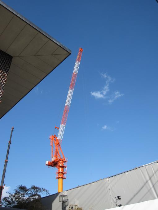 タワークレーン20100129