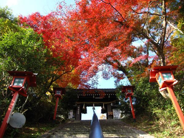 松ヶ崎大黒天20101120-3