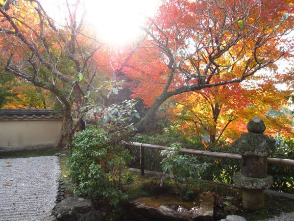 野仏庵20101120-2