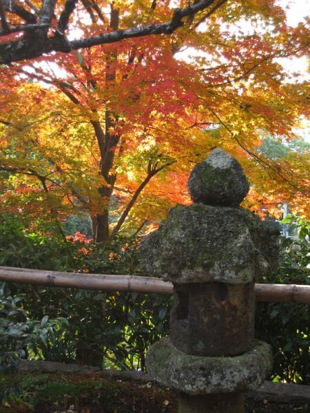 野仏庵20101120-3