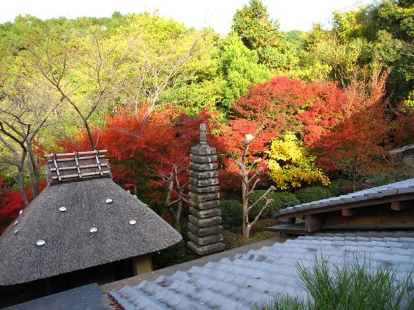 野仏庵20101120-5