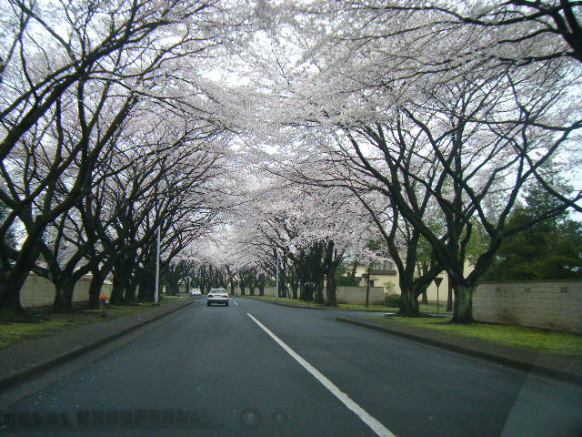 2010 Yokota - East Gate in the morning