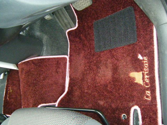 Vehicle Mat 1