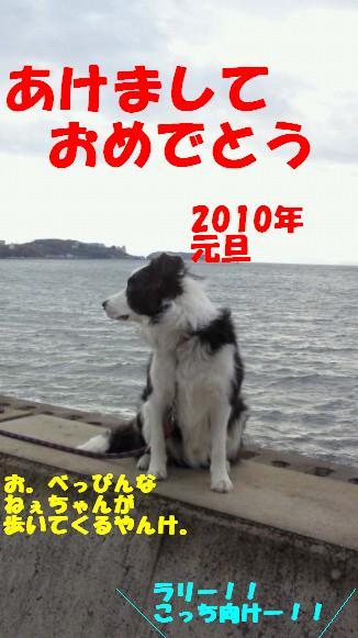 200912050903000.jpg