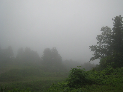 110701b.jpg