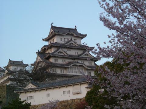 2006.04.13 桜 024