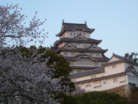2006.04.13 桜 022