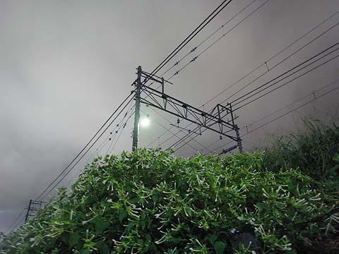 oshiroi480.jpg