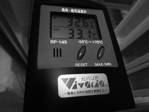 P1060774 (480x360)