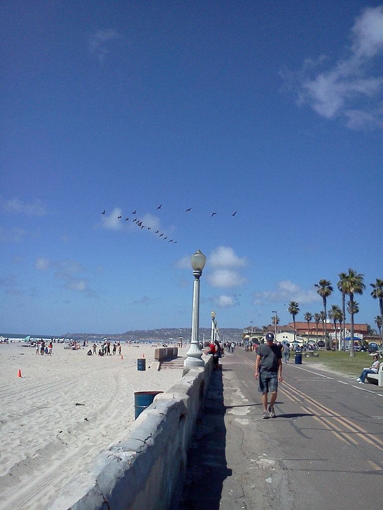 カリフォルニアビーチ2