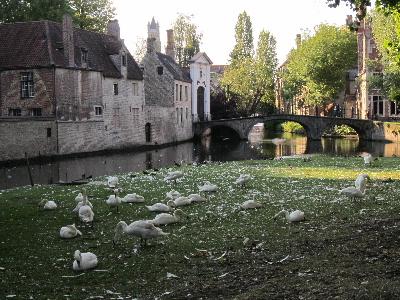 Brugge21