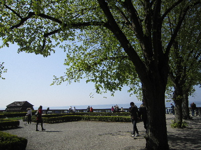 Pbodensee02