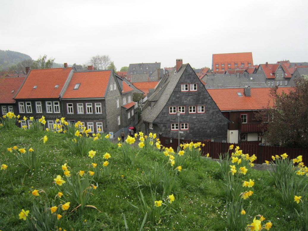 Goslar10