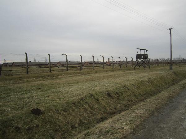 Birkenau02