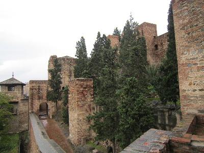 Malaga50