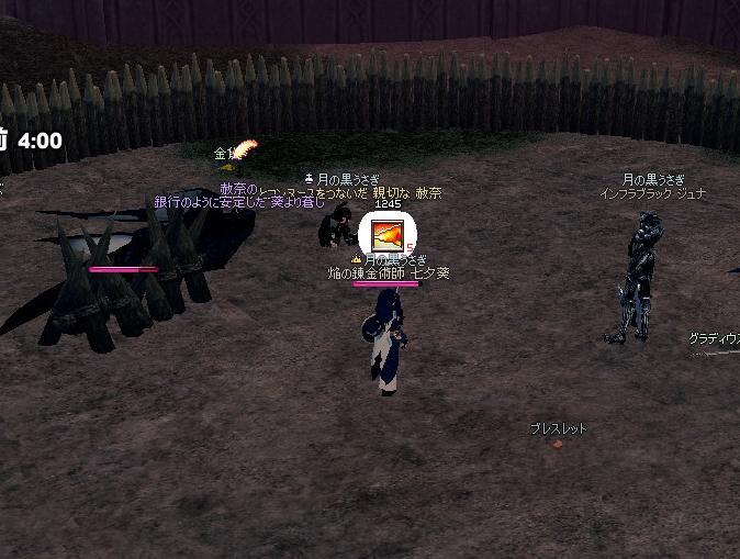 mabinogi_2010_12_20_002.jpg