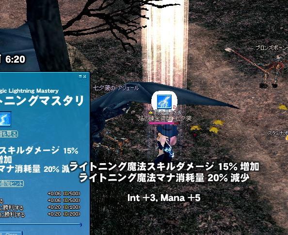 mabinogi_2011_01_08_001.jpg