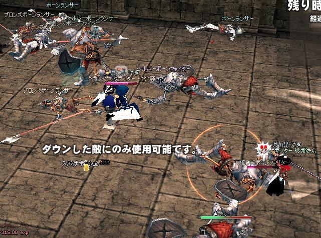 mabinogi_2011_01_20_001.jpg