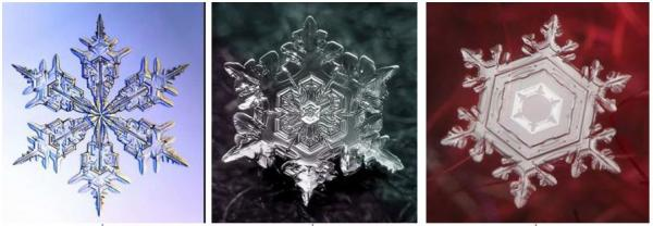 雪の結晶 ブログ
