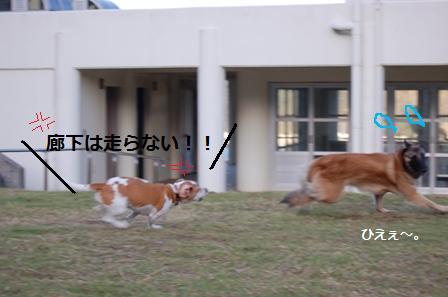 910w6.jpg