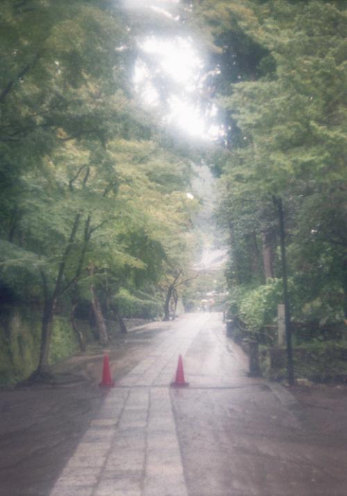 re+円覚寺 参道_convert_20101109202214