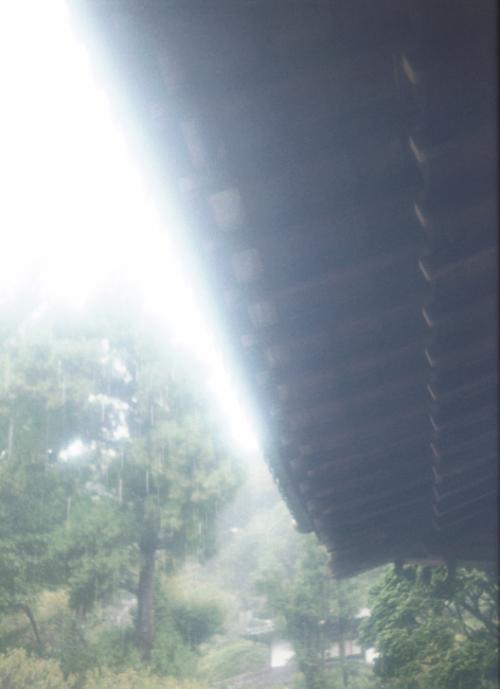 re+円覚寺 雨粒光る屋根_convert_20101110230853