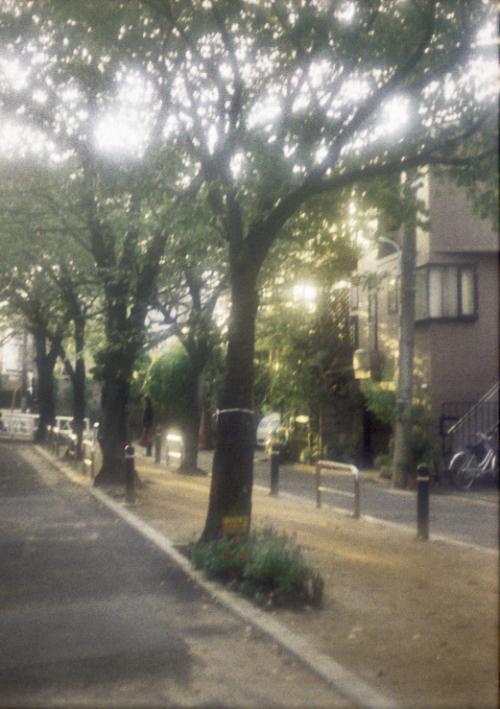 re+自由が丘 遊歩道_convert_20101112172251