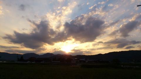 夕焼け_黄