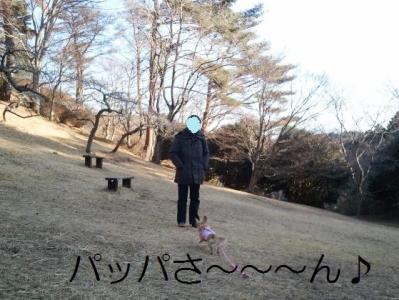 2011-02-03 14.54.16 (640x480)