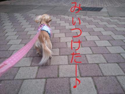 2011-04-07 11.29.00 (640x480)