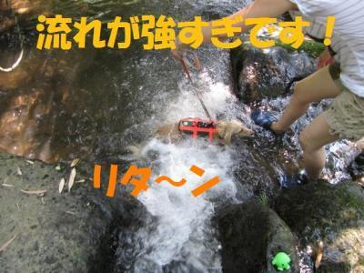 IMG_4073 (640x480)