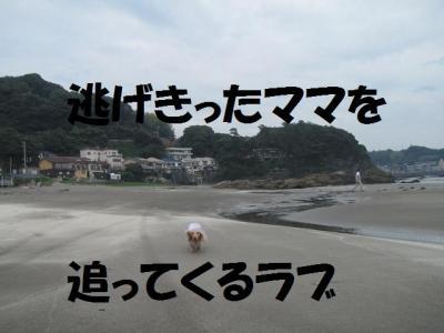 IMG_4150 (640x480)