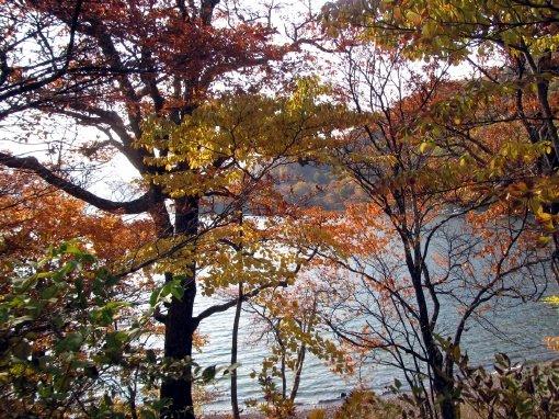 紅葉 中禅寺湖2